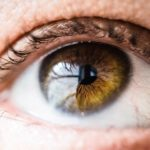If you're finally convinced to start searching for an eye doctor, here are some things to consider when searching for eye exams near me.