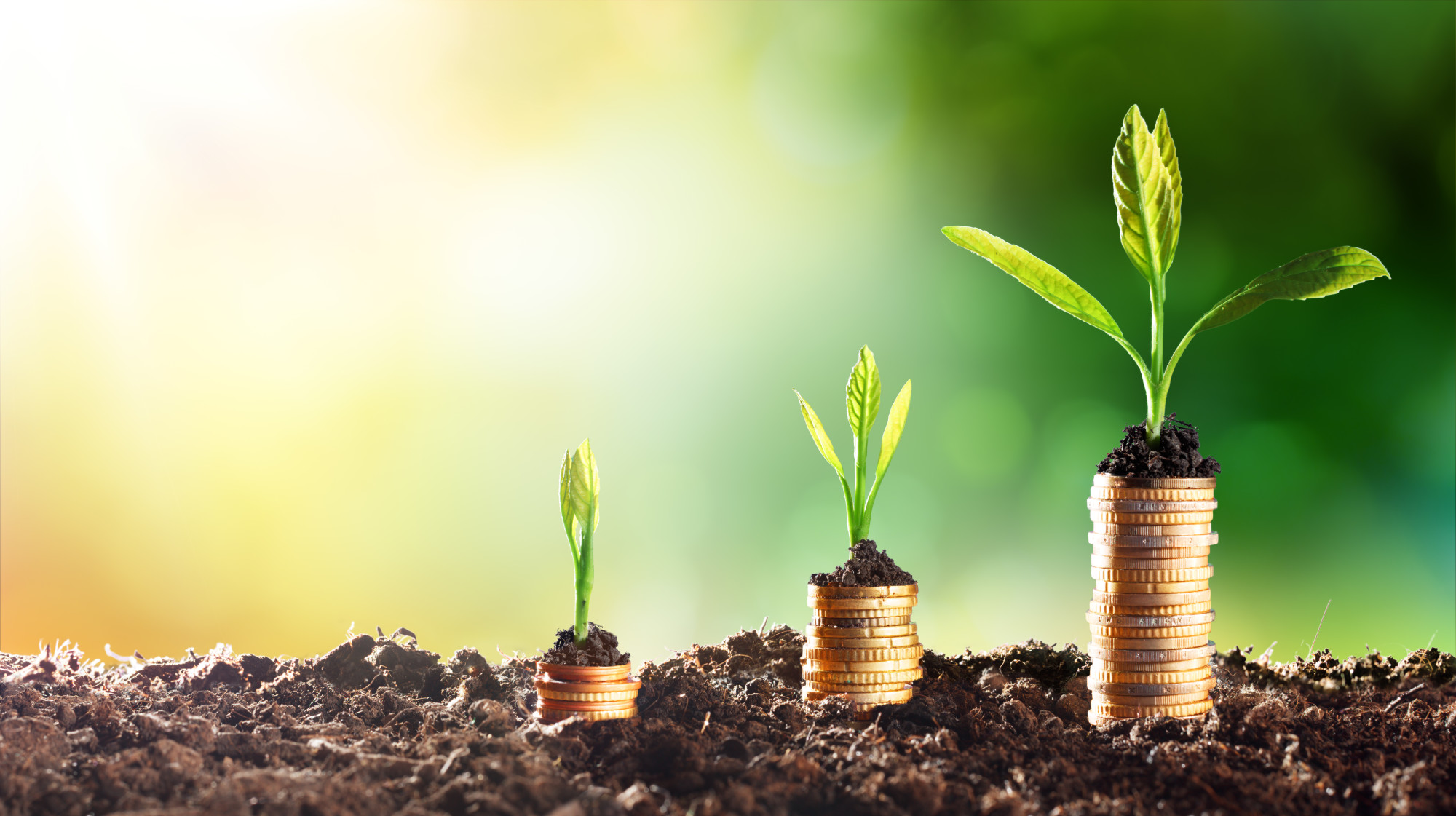 Are you trying to choose an investment bank? If so, there are some things you should know. Here's how to choose an investment bank.