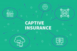 A Brief Overview to Understanding Captives and How to Use Them